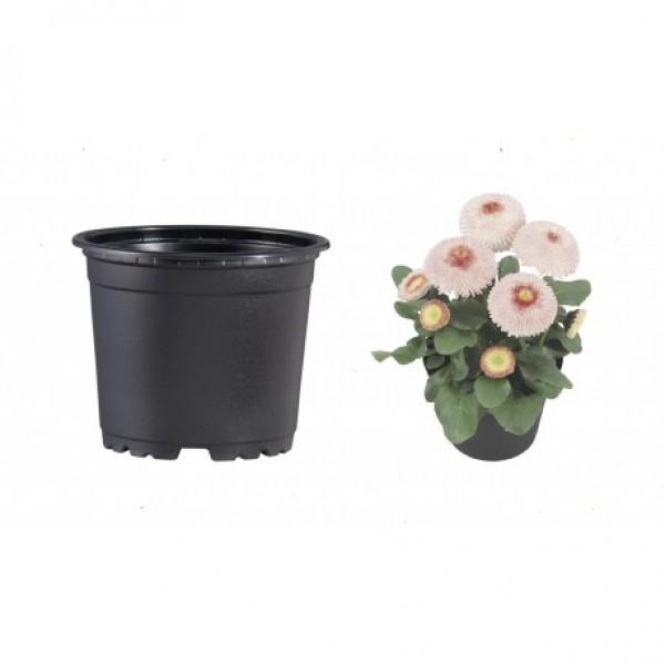 Pots VCG 10cm Black