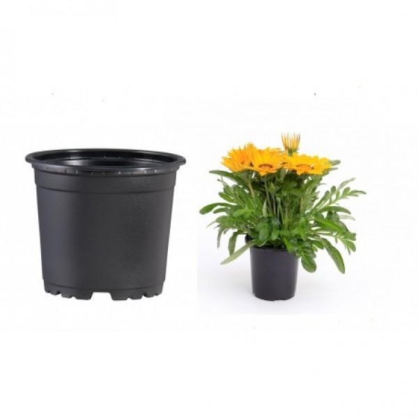 Pots VCG 11cm Black