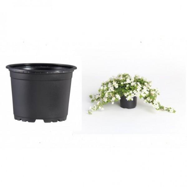 Pots VCG 14cm Black