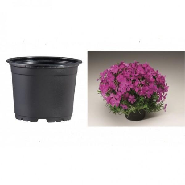 Pots VCG 19cm Black