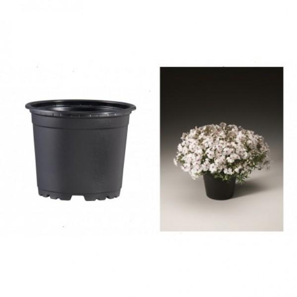 Pots VCG 21cm Black