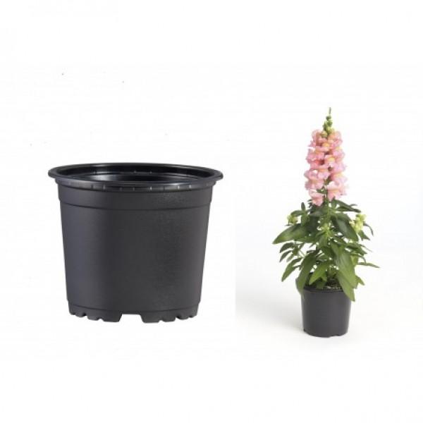 Pots VCG 9cm Black